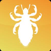 SAS Pest Control Services All Pests